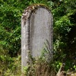 Gravestone — Stock Photo #13614758