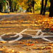 Bike path. Autumn - Stock Photo
