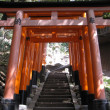 JAPAN-KYOTO-INARI — Stock Photo