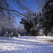 Foto Stock: Snowy cemetry in winter sunlight