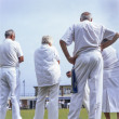 Seniors playing bowls, Teinmouth, Devon, 2010 — Stock Photo