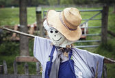 Stylish scarecrow with tie and hat — Stock Photo