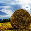 Stock Photo: Bale of straw