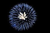Fireworks mavi — Stok fotoğraf