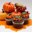 Halloween Cupcakes — Stock Photo #13346778