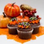Halloween Cupcakes — Stock Photo #13346778