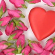 Big heart shape and pink roses — Stock Photo