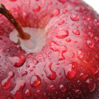 Macro shot of red apple - Stockfoto
