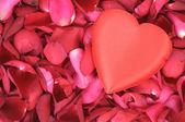 Big heart shape on rose petals — Stock Photo