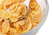 Macro shot of corn flakes — Stockfoto