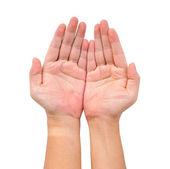 Two open hand — Zdjęcie stockowe