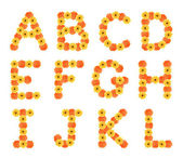 Set of alphabets created by daisy flowers. — Stock Photo