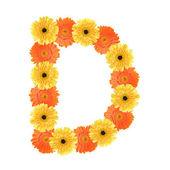 Alphabet D created by flower — Stock Photo