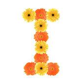 Alphabet I created by flower — Stock Photo