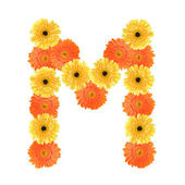 Alphabet M created by flower — Stock Photo