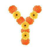 Alfabeto y creato da fiore — Foto Stock