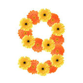 Number 9 created by flowers — Stock Photo