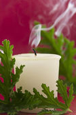 Citronella Candle — Stock Photo