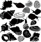 Variety of snails — Stock Vector