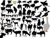 Animals collection isolated on white background — Stock Vector