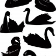 Royalty-Free Stock Vector Image: Set of swans
