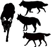Wolves — Stock Vector