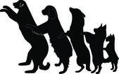 Dogs dance — Stock Vector