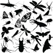 Collection of insects - Vektorgrafik