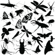 Collection of insects - Stok Vektr