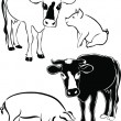 Cow and pig - Stockvektor
