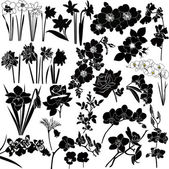 Collection of flowers — Stock Vector