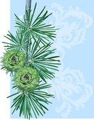 Spruce twig — Stock Vector