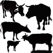 Illustration - Cow calf animals isolated white background vector silhouette — Stock Vector #14768725