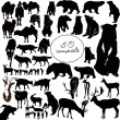50 animals — Vector de stock #16496623