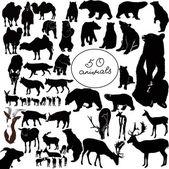 50 animals — Stock Vector