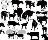 Koe geit dieren kalf — Stockvector