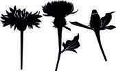 Colección de flores — Vector de stock