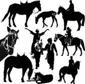 Horses animals equestrian sport — Stock Vector