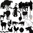Farm livestock farming — Stock Vector #19875671