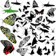Set of insects animals — Stock Vector