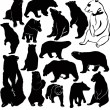 Bear set — Stock Vector
