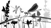 Dragonfly insecten — Stockvector