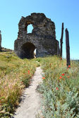 Ruined building in poppies field — Stock Photo