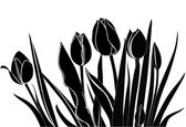 Tulips flowers — Stock Vector