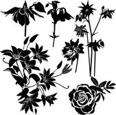 Flowers of clematis, roses, columbine — Stock Vector