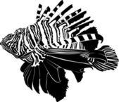 Marine aquarium fish Zebra Lionfish — Stock Vector