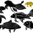 Stock Vector: Fish, black and white