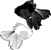 Black and white fish — Stock Vector