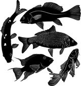 Collection of fish — Vector de stock