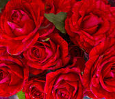 Bouqet of red roses — Stock Photo
